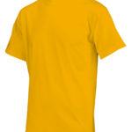 T190 yellow